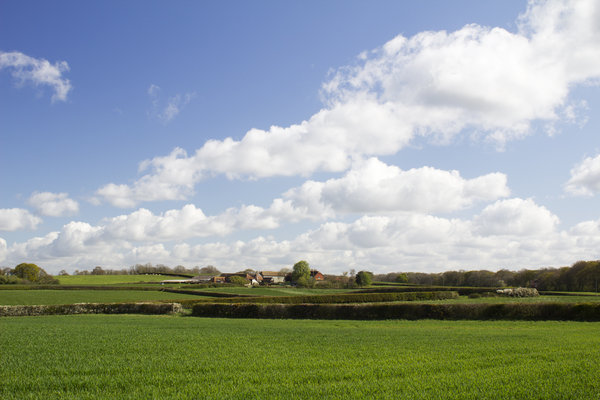 Farmland in spring: Farmland in West Sussex, England, in spring.