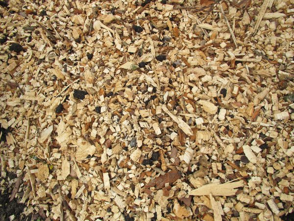 wood mulch texture: wood mulch texture