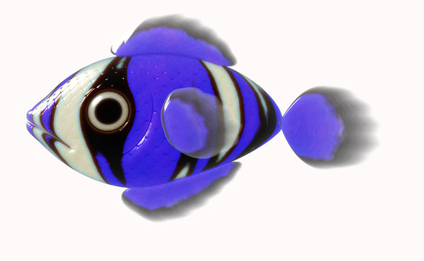 A Little Fish 4: A cute little 3d fish in cobalt blue, black, white and purple, against a white background.