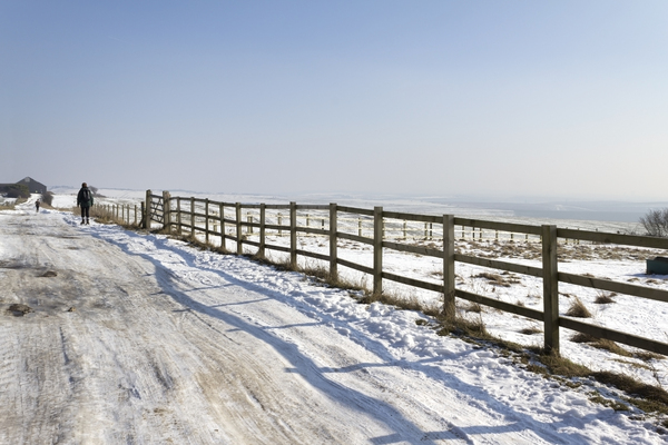 Snowy path: A long-distance path on the South Downs, England, in February snow.