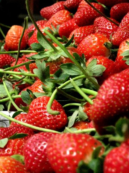 Fresh Red Strawberries: Freshly picked