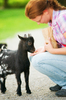 Feeding a Baby Goat