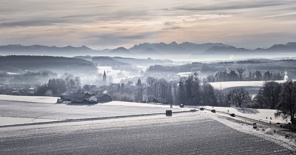 Morning on Winter Landscape:
