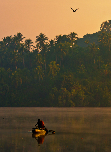 Fisherman in first Morning Lig: Fisherman with Canoe at Sunrise - Kumarakanda Lagoon, Sri Lanka. Eagle flying.