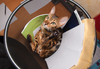 Bengal Cat playing in Recycle 