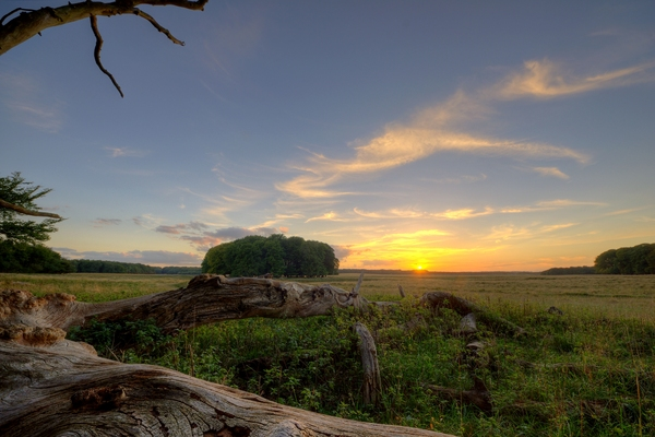 Plain and sunset - HDR: The plain with a trunk in front and wide open space behind with the sunset. The image is HDR.