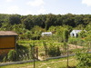 Allotment (gardening)