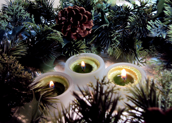 Christmas Candles: Candles surrounded with berries and holly