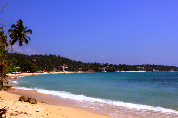 Tropical Beach: Beach front at Unawatuna, Sri Lanka.