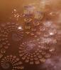 Browns fractal