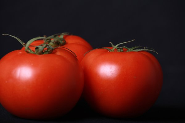 Three Beef Tomatoes: Three Beef Tomatoes against black
