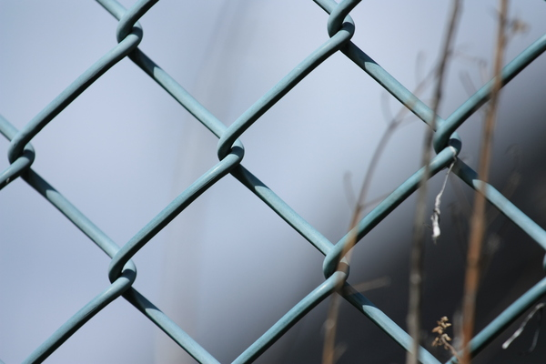 Fence close-up: Close-up of a metal mesh fence