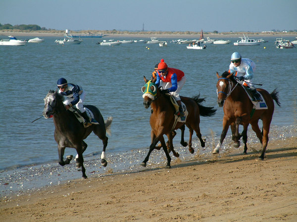 Horses racing in the beach: Sanlucar the Barrameda is the only place where you can see horses racing in the beach.