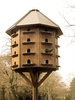 wooden dove house 2