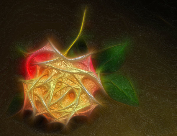 3D Fractal Rose: A fractal rose edited with a 3d effect,
