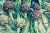 Artichokes 2