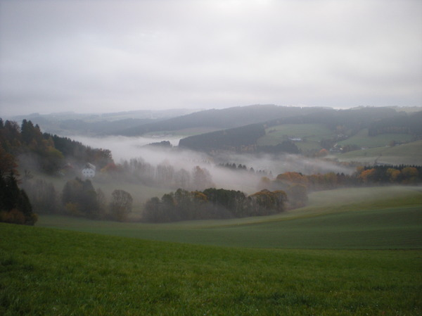 foggy autumn: on my daily way to work...