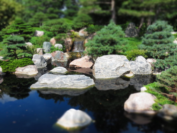 Free stock photos rgbstock free stock images mini for Mini japanese garden