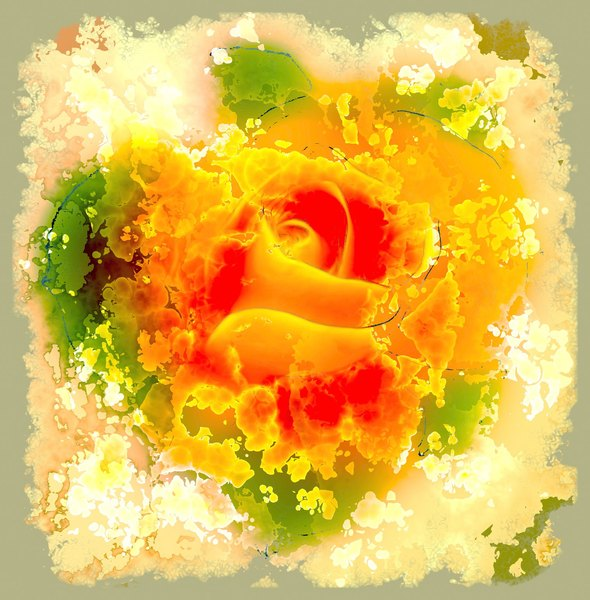 Collage Rose 2: A beautiful arty rose collage. You may prefer:  http://www.rgbstock.com/photo/mlwZcOw/Grunge+Rose  or:  http://www.rgbstock.com/photo/mikJqII/Abstract+Rose+3  or:  http://www.rgbstock.com/photo/2dyXzii/Sepia+Rose