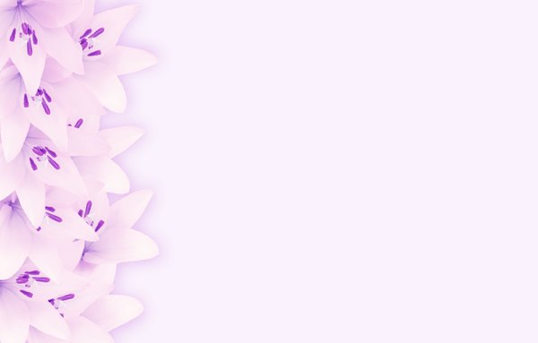 Border of Lilies 5: A lily border in pink, purple and white. Great card or invitation.
