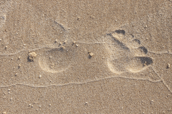 footprint in the sand: foot print in the sand at the beach