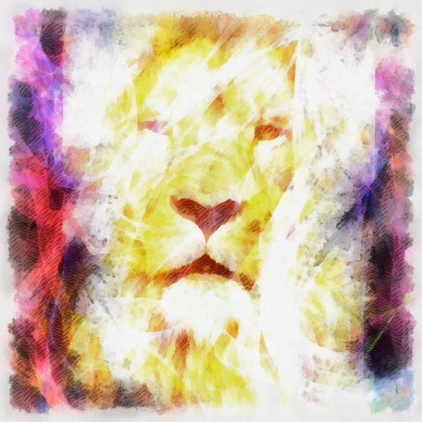 Lion: Digital abstract lion portrait.