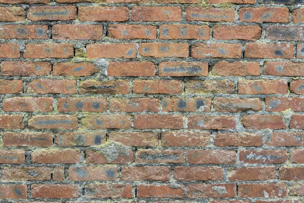 Brick texture: Brick wall of an old cowshed.