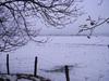 Winterscene 2