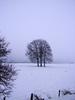 Winterscene 4