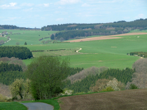 Another view on the hills: Just another view on the hills of the Ardennes. They offer many beautiful sights