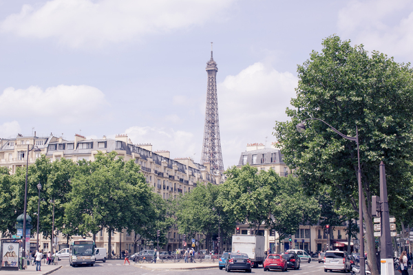Paris Cityscape 4: Photo of Paris cityscape