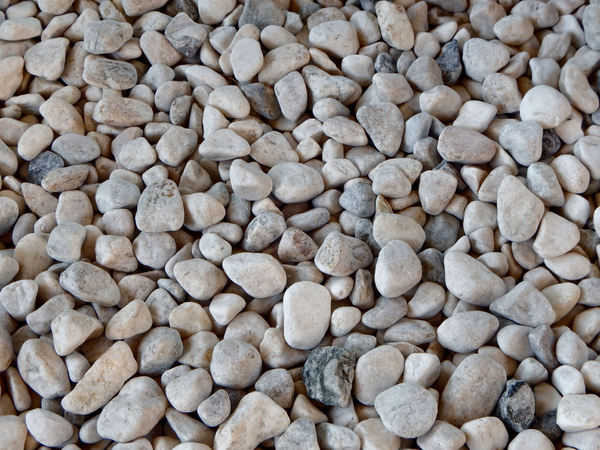 Free stock photos rgbstock free stock images garden for Smooth stones for landscaping