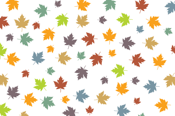 Colorful leaves 1: Colorful leaves background