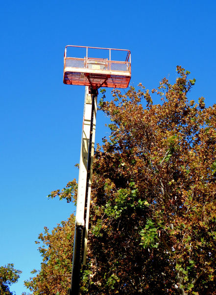 high & lifted up: raised cherrypicker platform