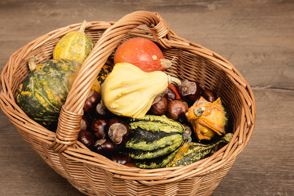 autumn background: pumpkins in basket