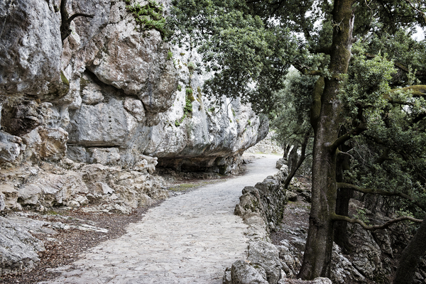 Creepy cliff path: A slightly creepy cliff path for pilgrims in Majorca, Balearic Islands, Spain.