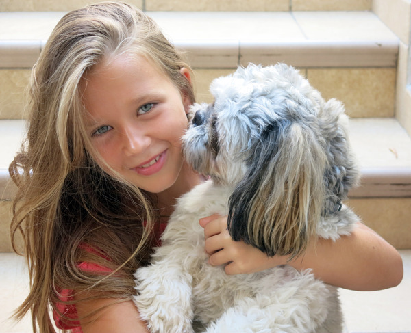 best friends 2: the little girl and her dog